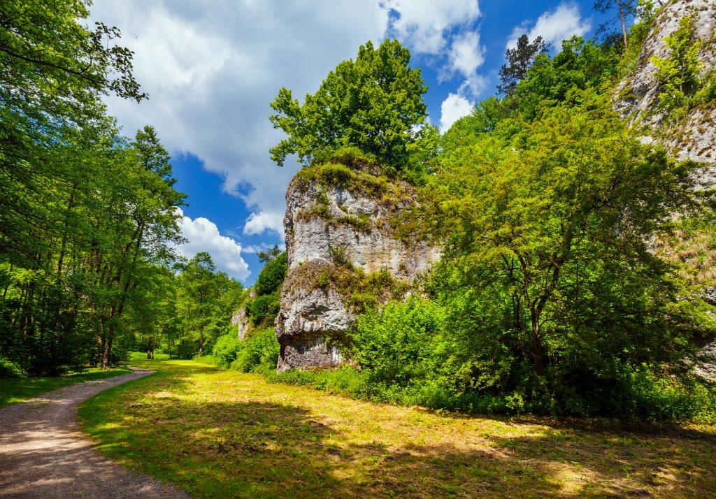 Dolinki Krakowskie - krajobraz