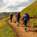 trzech turystów z plecakami idzie ścieżką w górach